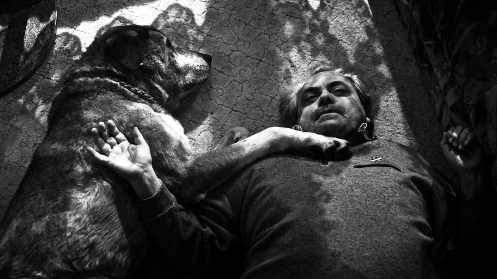 Von Hunden und Pferden @ Peter Matjasko