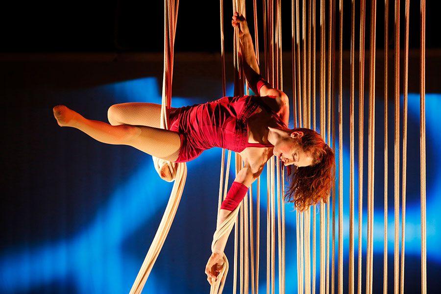 In den Seilen hängen mal anders ... Comeback im Krystallpalast © Stefan Hoyer